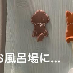 インテリア雑貨/マグネットフック/100均/ダイソー/おしゃれ ダイソーのマグネットフック🧲 可愛い💕で…(2枚目)