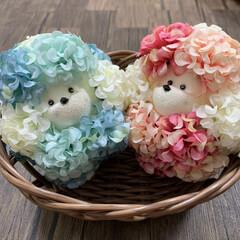 ハリネズミ/ひな祭り/ピンク/キャンドゥ/ダイソー/セリア/... 私のアイコンのお花のハリネズミさん達… …