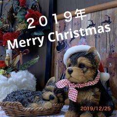 【PR】LIMIAcamp/クリスマス2019/リミアの冬暮らし/キャンドゥ/ダイソー/セリア/... メリークリスマス🎁 我が家は、クリスマス…