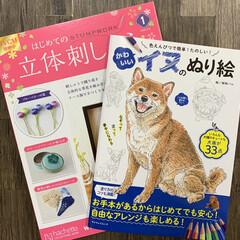 自粛アイテム/犬のぬり絵/雑貨/犬 本屋さんで、犬のぬり絵と立体刺しゅうの本…