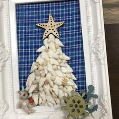 クリスマスツリー/貝がら/クリスマス2019/キャンドゥ/ダイソー/セリア/... 以前夏に作ったクリスマスツリー🌲  場所…