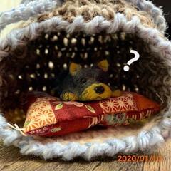 ミニチュア/ねこちぐら/手編み/ダイソー/100均/雑貨/... 昔からあるヨーキーの置物🐶 確かお菓子の…