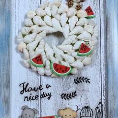 貝殻リース/フレームアート/犬/ペット/チワプー/ユザワヤ/... ブルーウォッシュのフレームに、貝殻のリー…