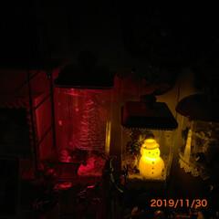 ライトアップ/キャンディポット/クリスマス2019/キャンドゥ/ダイソー/セリア/... キャンディポットのライトアップです。 今…(2枚目)
