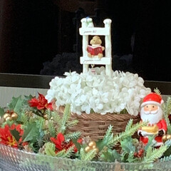 サンタ/クリスマス/リース/キャンドゥ/ダイソー/セリア/... 先日作ったリース等とサンタ(先日購入)を…