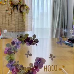 紫陽花/押し花アート/令和の一枚/至福のひととき/LIMIAインテリア部/雑貨/... チョコ(CHOCO)を押し花で作ってみま…