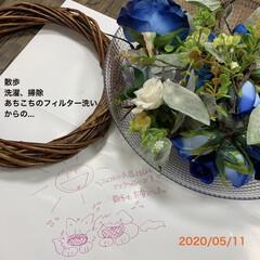 リース/ハンドメイド/サンキ/セリア/ダイソー/雑貨/... 久しぶりに造花にワイヤー掛けしたぞ〜😂 …