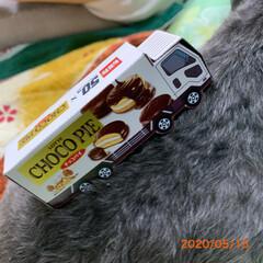 車の組み立て/チョコパイ/チワプー/ペット/犬/爆睡中/... 昨夜、チョコパイの箱の車の組み立てを作り…