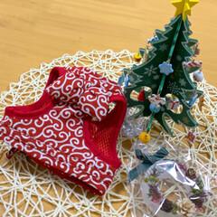ハーネス/犬/ペット/ヨーキー クリスマスプレゼント頂きました🎁 ハーネ…