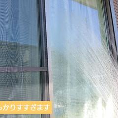 ウタマロクリーナー   ウタマロ(その他洗剤)を使ったクチコミ「 【暑い夏こそ窓掃除!】  子供の水遊び…」(3枚目)