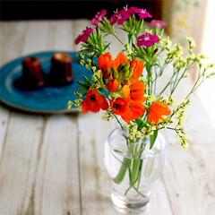 花のある生活/花のある暮らし/bloomeelife/暮らし bloomeelife からのお花の定期…