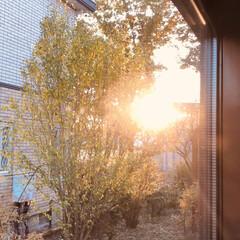 ここが好き 夕日の見えるリビング 好きな場所です😆👌