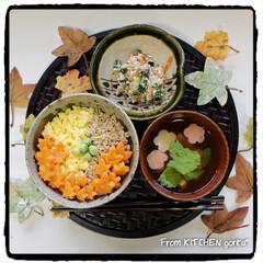 型抜き/紅葉型/チャチャっと飯/ほうれん草の白和え/そぼろ丼/簡単レシピ/... 4色そぼろ丼♬とほうれん草の白和え de…
