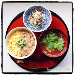 ヤマサレシピ/ヤマサ醤油/器好き/和食器/お吸い物/白和え/... 3色そぼろ丼de和ンプレートごはん🍚 …