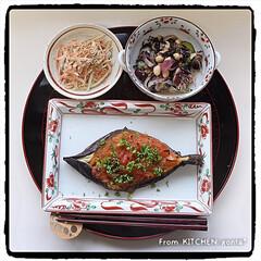 和食器コレクション/和食器好き/たち吉/赤絵/ごぼうサラダ/ひじきのマリネ/... 坊さんの気絶⁈を赤絵に盛って、頂きまーす…