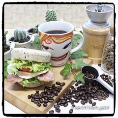 エチオピア🇪🇹イルガチャフィ•クイ.../サンドイッチ/イングリッシュマフィン/コーヒー焙煎機/コーヒーのある暮らし/おうちカフェ/... The Roastで極上コーヒー☕️を!…