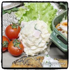 ストウブ/光泉窯/食器好きな人と繋がりたい/料理好きな人と繋がりたい/EATPICKレシピ/ポテトサラダ/... 鮭のチーズソテー🧀レモン香る🍋ヨーグ…(4枚目)