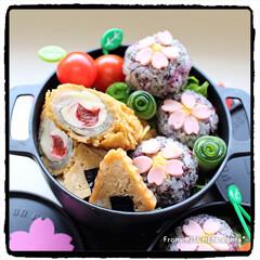 料理好きな人と繋がりたい/手毬ずし/花見弁当/桜弁当/さくらパンダ/みんなのブログ/... さくらパンダ、花見に行く…弁当🌸  …(3枚目)