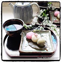 コッタ/ゲンキンな大人たち/花より団子/さくら餅/関西風さくら餅/道明寺粉/... さくら餅🌸de三色団子🍡  おはよう…