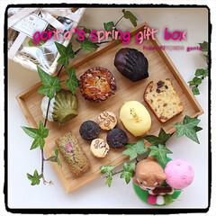 キャラメルナッツタルト/クッキー/フィナンシェ/マドレーヌ/パウンドケーキ/レモンケーキ/... gonta*'s spring gift…