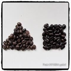 珈琲焙煎機/コーヒーのある暮らし/コーヒー焙煎機/たまごサンド/ポテトサラダ/ビタントニオ/... The Roastでいただく極上coff…(4枚目)