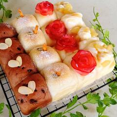 アップルパン/ちぎりパン/りんごパン/おうちパン/スイーツ/おやつ りんごのちぎりパン  *りんごフィリング…