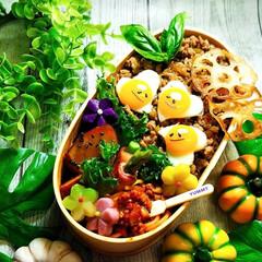 ガパオライス弁当/ガパオライス/ご飯/お弁当/フォロー大歓迎 ガパオライス弁当  *ガパオライス *ス…