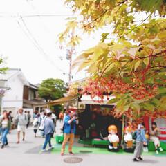 わたしのGW 京都にきたよ  #春のフォト投稿キャンペ…