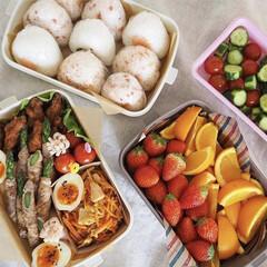 ランチボックス/お弁当/お花見/お花見弁当/わたしのごはん お花見弁当🌸 満開の桜の木の下で家族と食…