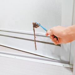 掃除/家事/お風呂/バス/扉/ホコリ/... 貼るだけで浴室扉のホコリを防ぐ便利なフィ…