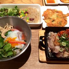 グルメ/韓国料理/冷麺/サラダ/サムギョプサル/チヂミ/... 先日、韓国料理屋さんにランチを食べに行っ…