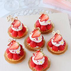 Cafe/STRAWBERRY/sweets/cake/おうちカフェ/苺タルト/... 🍓いちごのミニタルト  ひとくちサイズの…(1枚目)