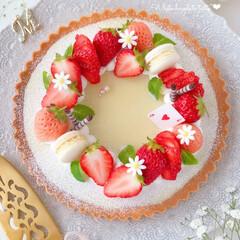 淡雪/chocolate/cake/Cafe/STRAWBERRY/sweets/... 🍓ホワイト生チョコタルト  淡雪いちごも…