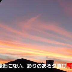 地震が起きそうな予感の雲だにゃん🐱 8時前、2階に上がると、窓から綺麗な夕焼…(1枚目)