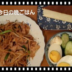 晩ごはん お昼マックⓂ️🍔🍟したので、お腹が空かな…(1枚目)