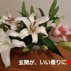 花のある暮らし スーパーの切り花コーナーでお買い得‼️ …