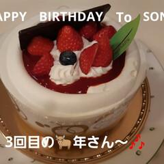 シャトレーゼ/お誕生日 おっさん息子くんの 誕生日、おめでとうね…