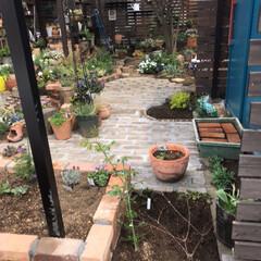 春のフォト投稿キャンペーン/はじめてフォト投稿/DIY/風景/暮らし/住まい/... もともと駐車場だったところをコンクリート…(4枚目)