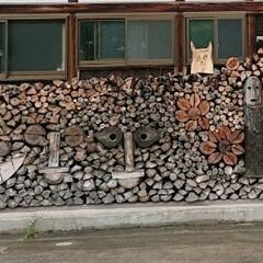ジブリ/トトロの居るおうち/お出かけ/暮らし 🍀トトロ🍀  私の家の近所…「近所じゃな…(2枚目)