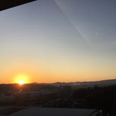 朝陽 はじめての日の出 裏六甲の稜線に鮮やかな…