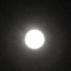 満月🌕 夜明け前の月 今夜は満月🌕今月二度目