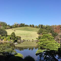花のある暮らし/お花大好き/築山/日本庭園/大阪万博 万博 日本庭園の築山 誰もいなくなる瞬間…