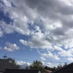 雲の流れ/コロナに負けない/空 この空 もう夏空の ようですよ💙