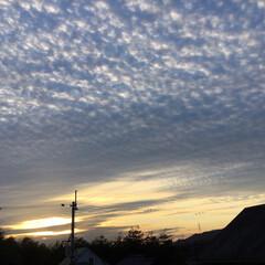 いま空/定位置観測/今日の夕焼け/夕暮れ風景/夕焼け大好き 日没 16:56 今日も一日お疲れ様でし…