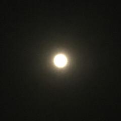 満月🌕 日没 19:11 今日も一日お疲れ様でし…
