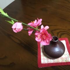 桃の花/手作りコースター/立杭焼一輪挿し 先日長女の手土産に 飾られていた 桃の花…