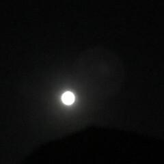 満月の夜空/今宵の月 バックムーン満月🌕 とても明るい満月です(1枚目)