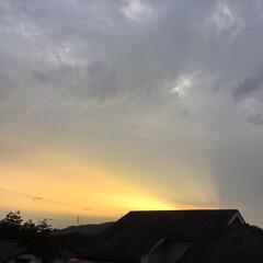 夕焼け大好き/夕暮れ/夕焼け雲 日没 19:01 今日も一日お疲れ様でし…