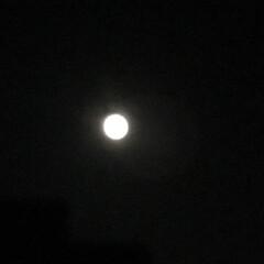 満月🌕 6月の満月はストロベリームーン そして今…