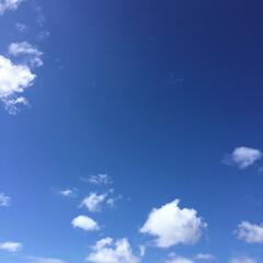 いま空/秋空/台風一過 台風一過の爽やかな秋空 まさに天高く..…